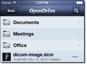 OpenDrive for iPhone