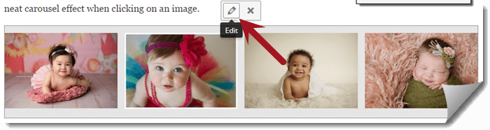 Edit an Image Gallery in WordPress