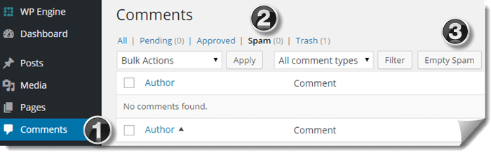 Delete Spam Comments
